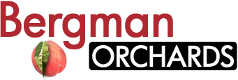 Bergman Orchards logo