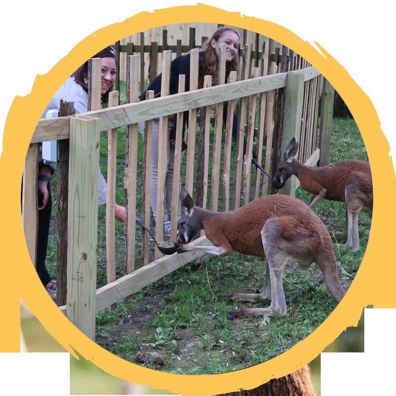 two girls feeding red kangaroo circle