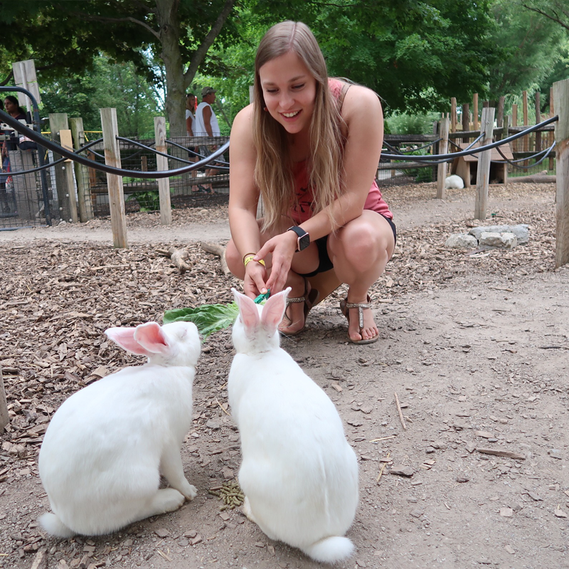 teen girl feeding two rabbits